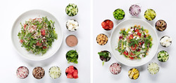 Ovlo Salads with Ingredients
