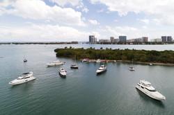 Miami Island Party