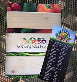 KISRA growing jobs brochure and rackcard