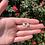 Thumbnail: Sterling Silver Teardrop Earrings