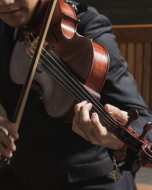 Nexus Strings | String music | Weddings