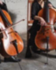 Nexus Strings | Denver string music