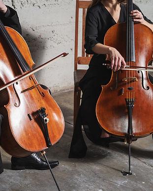 Nexus Strings   Denver string music