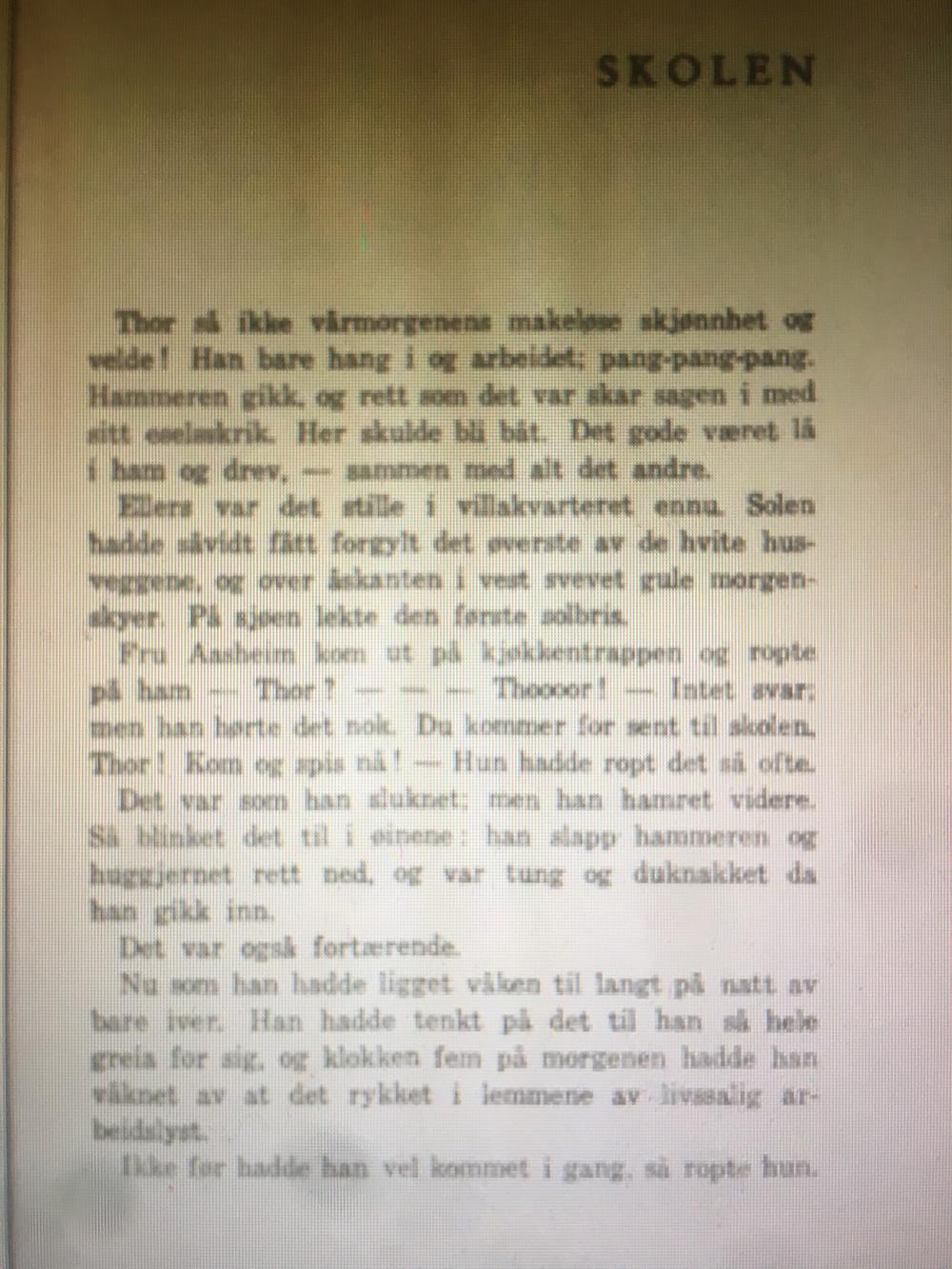 Gutten Tiden og Djevelen, Gunnar Havstad