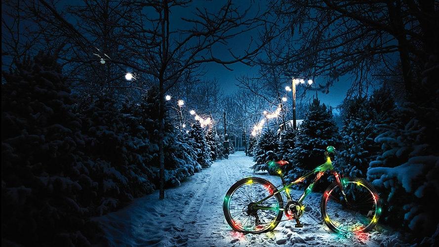 christmasbike.jpg