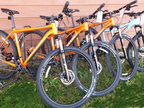 Enjoy the Sunshine - Rent a Bike!