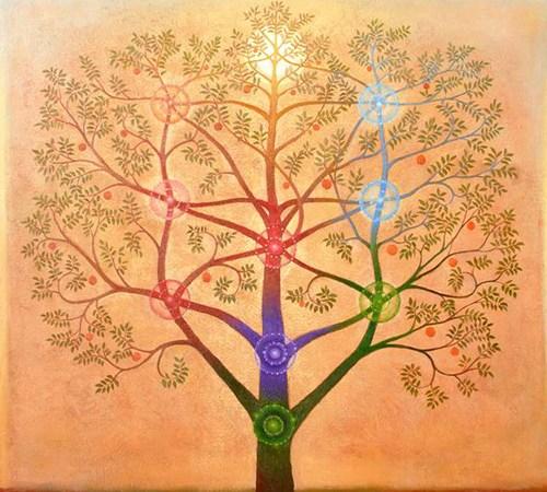 Universal Kabbalah Ascension Program