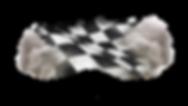flaganddust_2.png