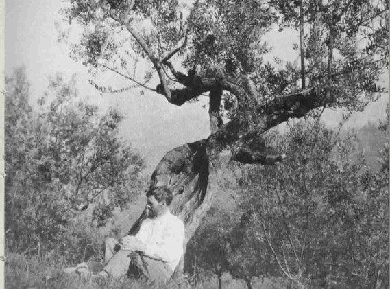 d-h-lawrence1926.jpg