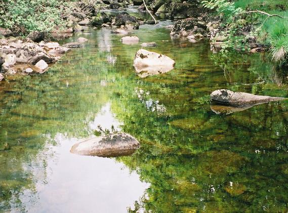 Clear Water.jpg