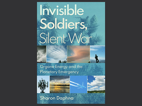 Invisible Soldiers, Silent War by Sharon Daphna