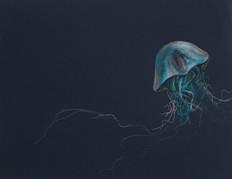 navy jelly 1.jpg