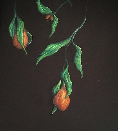 Orange Botanical