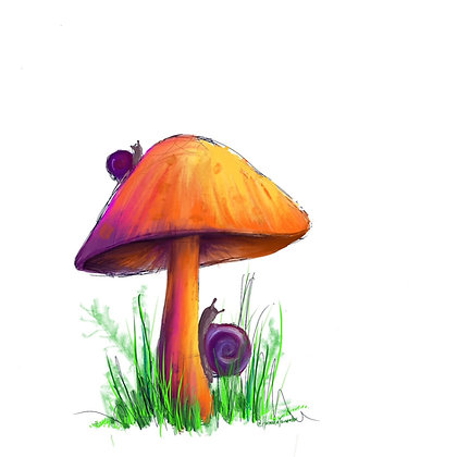 Summertime Mushroom Digital Art