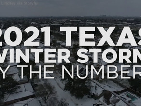 What winter-storm damages do insurers cover?