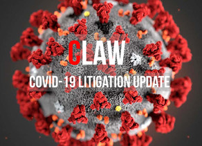UPDATE COVID-19 MDL HEARING