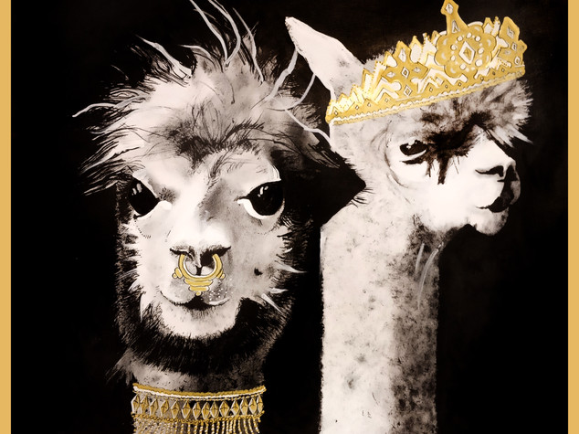 Royal Alpacas