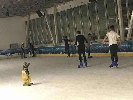 Klubi i të rinjve, patinazh dhe jo vetëm...