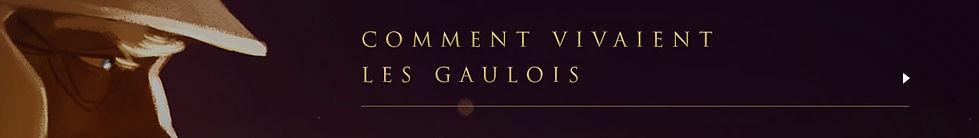 dernier-gaulois-1lf.jpg