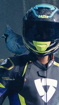 Cardinals Racing Malaysia - Imaginative & Conceptual