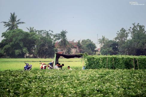 Kampung Sungai Haji Dorani Homestay - Exterior