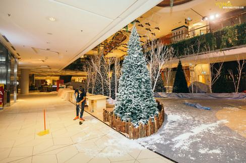 Orient Snow x The Starling Mall - Interior