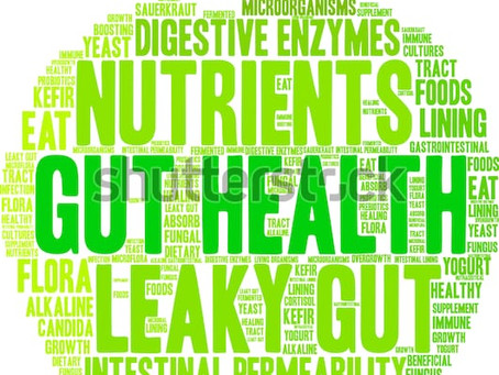 Gut Health and why it matters to you - Part 1