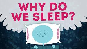 Sleep - The Habit You Need To Create ASAP For Longevity