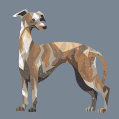 Greyhound Dog illustration