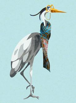 Fancy Heron