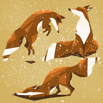 Playful Christmas Foxes