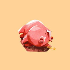 Year of the Pig 4