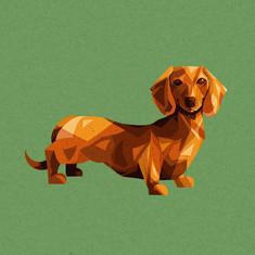 Sausage Doggy