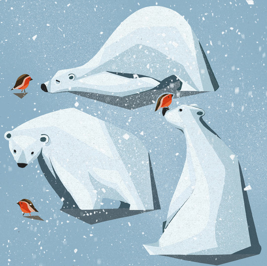 Polar Bear & Robin Pal Illustration