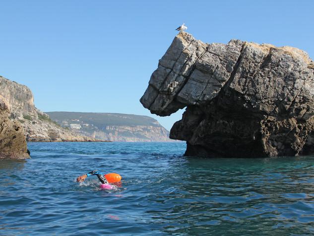Swim-Camp-Sesimbra-29.jpg