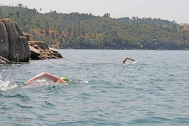 Two-swimmers-swimming-without-wetsuit-ar