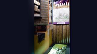 archeologisch museum brugge