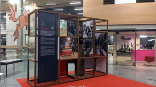 ros beiaard expo