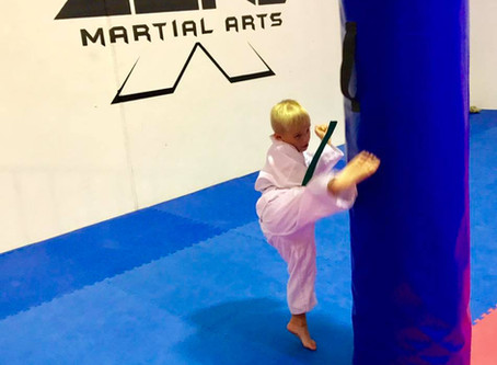 Martial arts is not about learning how to fight.
