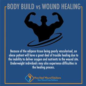 Body Build VS Wound Healing.jpg