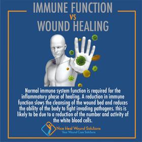 Immune function VS Wound Healing.jpg