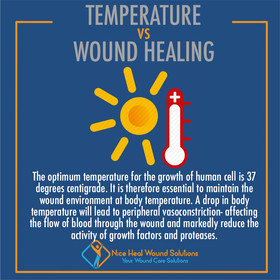 Temperature VS Wound Healing.jpg