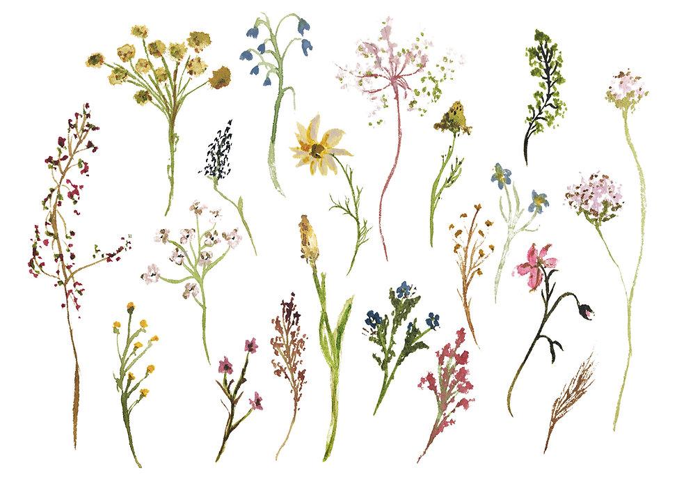 floral art print copy.jpg