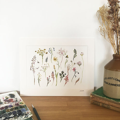 Floral Limited Edition Signed Print