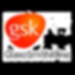 gsk-logo-png-image-information-300.png