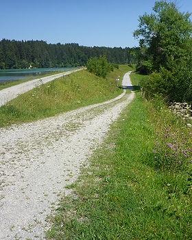 Wanderweg am Lech.jpg