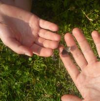 Kontakt mit Schmetterlingen
