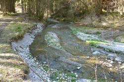 Steinebach bei Burggen