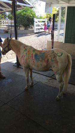 Paint the Pony