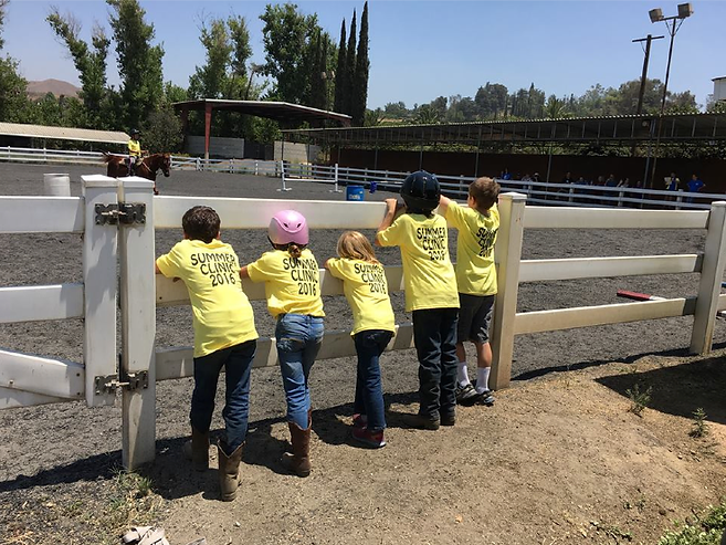 El Camino Ranch Summer Camp, El Camino Ranch Summer Clinic, Summer Clinic redlands, summer camp redlands, horse camp, el camino ranch, horse riding, horse lessons
